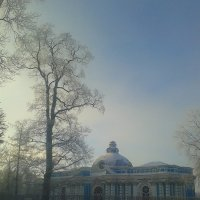 Морозный туман :: Сапсан