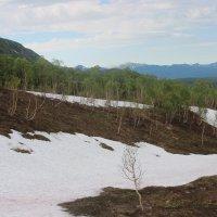 снег в июле :: Дмитрий Солоненко