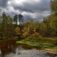 Осенняя речка :: Владимир Каравашкин