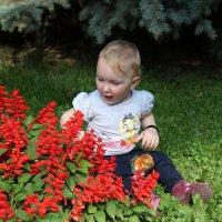 Классные цветочки! :: Anna Gornostayeva
