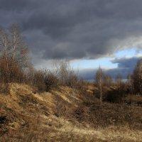 Поздняя осень :: OlegVS S