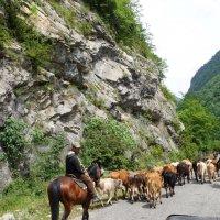 В горах Абхазии :: Елена