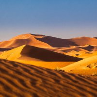 Пустыня :: Вячеслав Ложкин