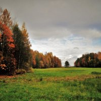 уж небо осенью дышало... :: Андрей Вестмит