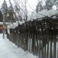 Мартовский забор в Томилино! :: Ольга Кривых