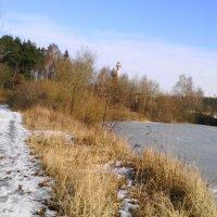 Дорожка вдоль озера :: галина