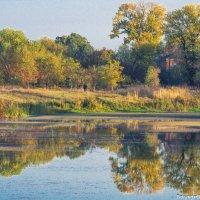 водное зазеркалье :: Ксения смирнова