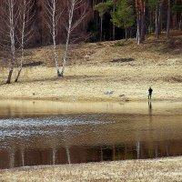 Рыбак. :: Нина Бурченкова.