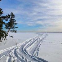 Сверкает поле перед зимнем лесом, и белая дорога вдаль идет. :: Galina Leskova