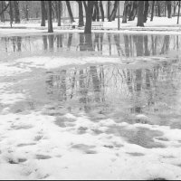 Зеркала, зеркала.. :: galina bronnikova