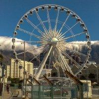 прогуливаясь по Кейптауну. :: Сергей Собиневский