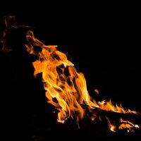 дух огня :: Natalia Fedina