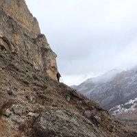 Мечты сбываются в горах... :: Светлана Попова