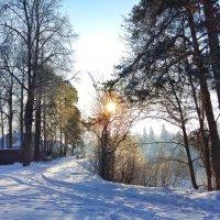 Мороз и солнце... :: Наталья Ерёменко