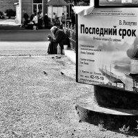 *** :: Наталья Новикова