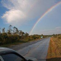 После дождя. Вологодская область :: MILAV V