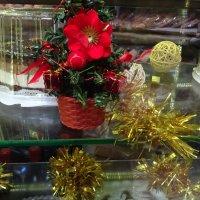 Праздничная витрина :: татьяна