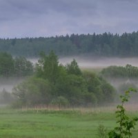 Туман на холмах :: Лара Симонова