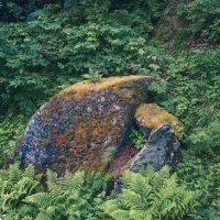 Камни ледникового периода :: alteragen Абанин Г.