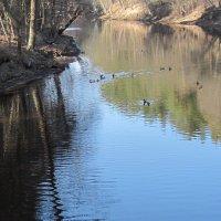 Март на реке Сестре :: Маера Урусова
