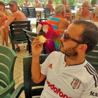 Попка любит грушу... :: Sergey Gordoff