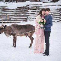 Love, north :: Сергей Ладкин