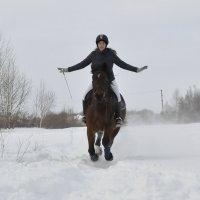 Прогулка на лошади :: Ольга Слободянюк