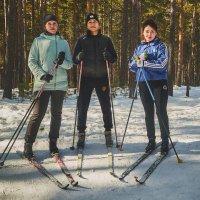 Три товарища на лыжах :: Сергей Черепанов