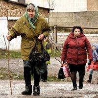 Женская эволюция в крымской глубинке... :: Сергей Леонтьев