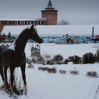 Лошадь коломенская :: san05   Александр Савицкий