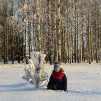 Зимняя зарисовка :: Vladimir Perminoff