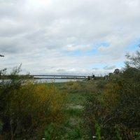 Осенний пейзаж :: СВЕТЛАНА .