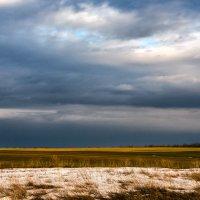 Еще в полях белеет снег... :: Виталий Павлов