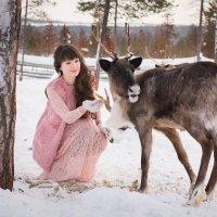 Forest story :: Сергей Ладкин