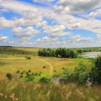 На диком озере :: Константин Снежин