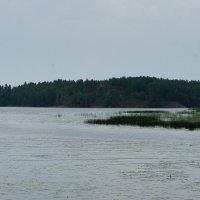 Башня Тура находится на острове Верхолаз (Korkeasaari) :: Елена Павлова (Смолова)