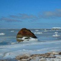 Ледяное безмолвие :: Елена Павлова (Смолова)