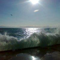 ...море волнуется :: alex ivanou