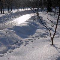 "Ледяная ""река"" :: Ирина Via"