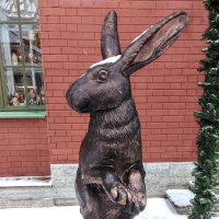 Второй заяц :: Александр Петров