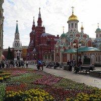 ой, кругом цветы и на улице :: Олег Лукьянов