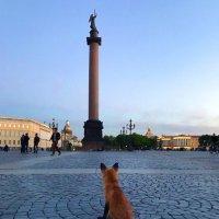 Дворцовая площадь :: Александр