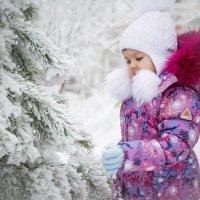 Зимнее волшебство :: Ксения Черногорова