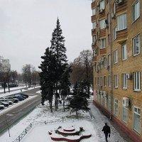 Зима на Ленинском :: san05   Александр Савицкий