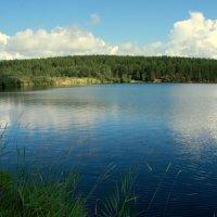 Южаковское водохранилище :: Нэля Лысенко