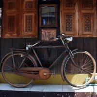Старый велосипед :: Наталья Покацкая