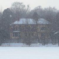 Снегопад :: Вера Щукина