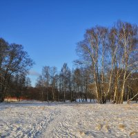 Ясный зимний день :: Алексей (GraAl)