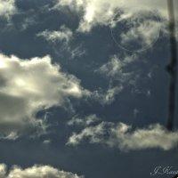 Лицо в облаках. :: Елена Kазак