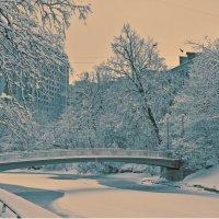 весна в городе :: Наталия П